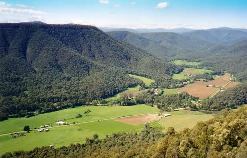 King Valley_Tacitus